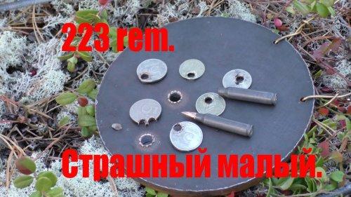 223 rem. пробивает сталь 10 мм.
