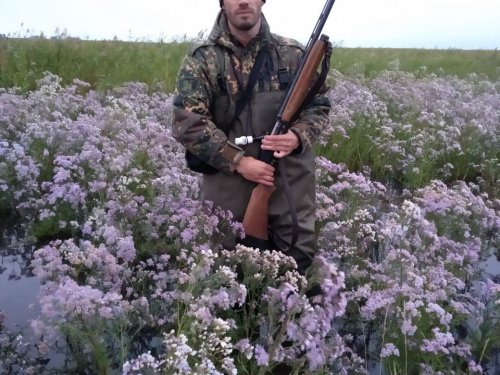 Цветы на болоте:)