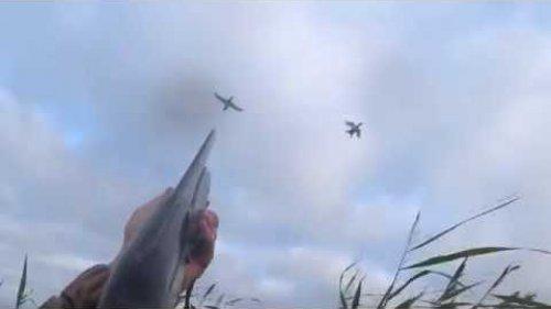 СКОРО. Охота на нетронутом болоте