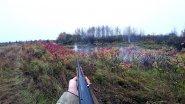 Охота на утку. Охота с ружьем МР-155. Утка в октябре 2018.