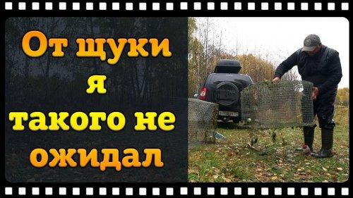 Ловля щук вместо карасей Финскими Катисками.