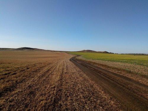 Осень, поля, дорога и отличное настроение
