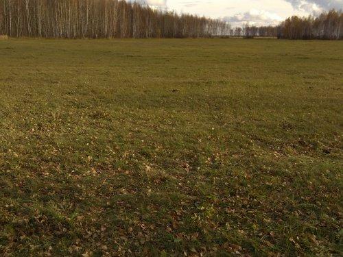 Осенний пейзаж 2