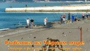 Рыбалка на Чёрном море ставрида кефаль барабуля окунь смарида  луфарь !!!