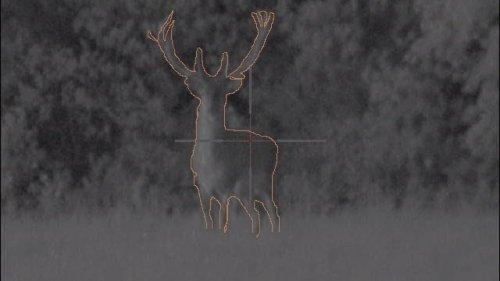 Охота ночью с ULTRA N355. Подборка точных выстрелов. Лучшие моменты на охоте!