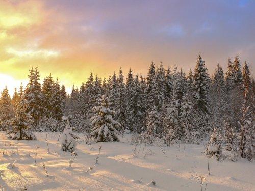 солнце после снегопада