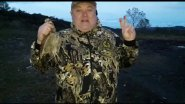 СКОРО Охота на голубя и вальдшнепа