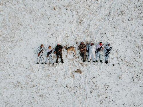 Незабываемая охота на косулю