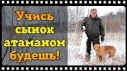 Охота на зайца с русской гончей или как Батя меня стрелять учил!)