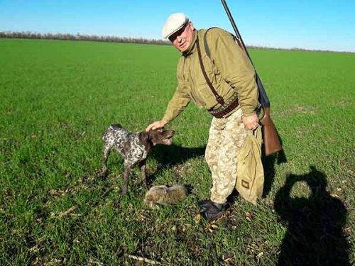 Открытие охоты в угодьях общества. Часть вторая, два+два