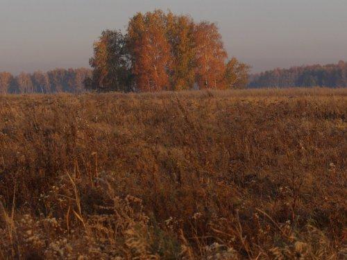 Осень..,