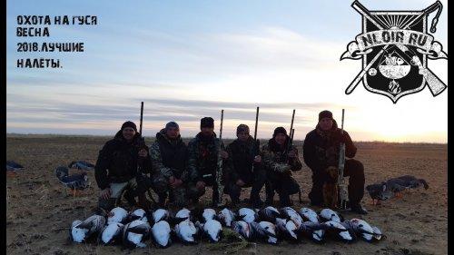 Охота на гуся 2018 Весна .Goose Hunting  2018.nloir.