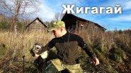 Нежилые деревни Кировской области. Деревня Жигагай. Поход с собакой.