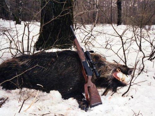 Новогодняя охота