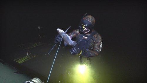 Подводная охота 2018. Лесная речка, закрытие сезона.