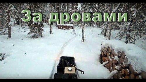"""Мотобуксировщик """"Барс следопыт"""" поездка за дровами в тайгу."""