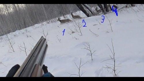 Охота. 4 косули на 2 патрона.  Hunting. 4 roe deer on 2 cartridges.