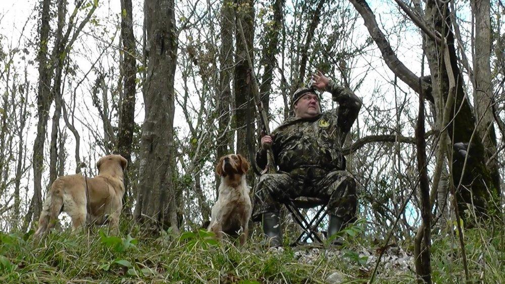 Охота на голубя в Сочи 3