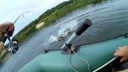 Рыбалка на спиннинг  Трофей на поппер