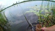 Рыбалка на поплавочную удочку.Секреты рыболова.
