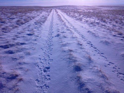Поездка в Сибиряк