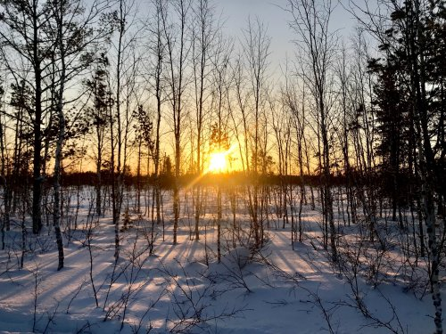 Доброе морозное утро!