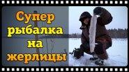 Налим на жерлицы зимой или зимняя рыбалка перед новым годом.