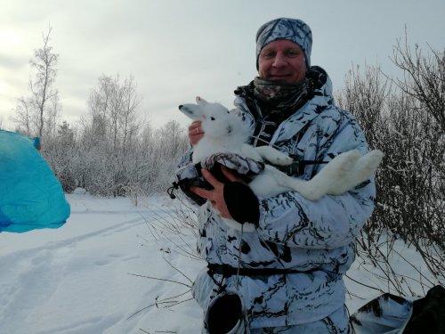 Зайчишка, первый в новом году!