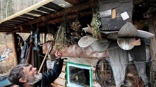 Профессиональная охота в Западной Сибири. Часть 2.