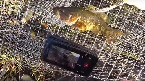 Рыбалка по-фински в России. Хотел обрыбиться, а получилось только рыбу на кормить