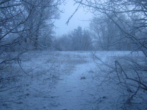 Для Кхоним(Леонида) Зимние краски весной...
