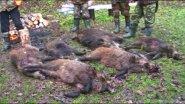 Охота на кабана. Выезд на охоту в Республику Беларусь, часть-1.