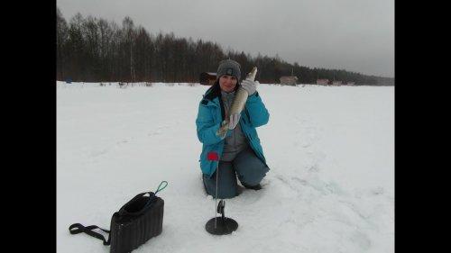 ЛОВЛЯ НА ЖЕРЛИЦЫ В АПРЕЛЕ ИЛИ ВЕЛИКАЯ ТАЙНА СИНОПТИКОВ. good winter fishing