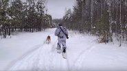 Охота на зайца с Русскими гончими. Закрытие сезона 2018-2019