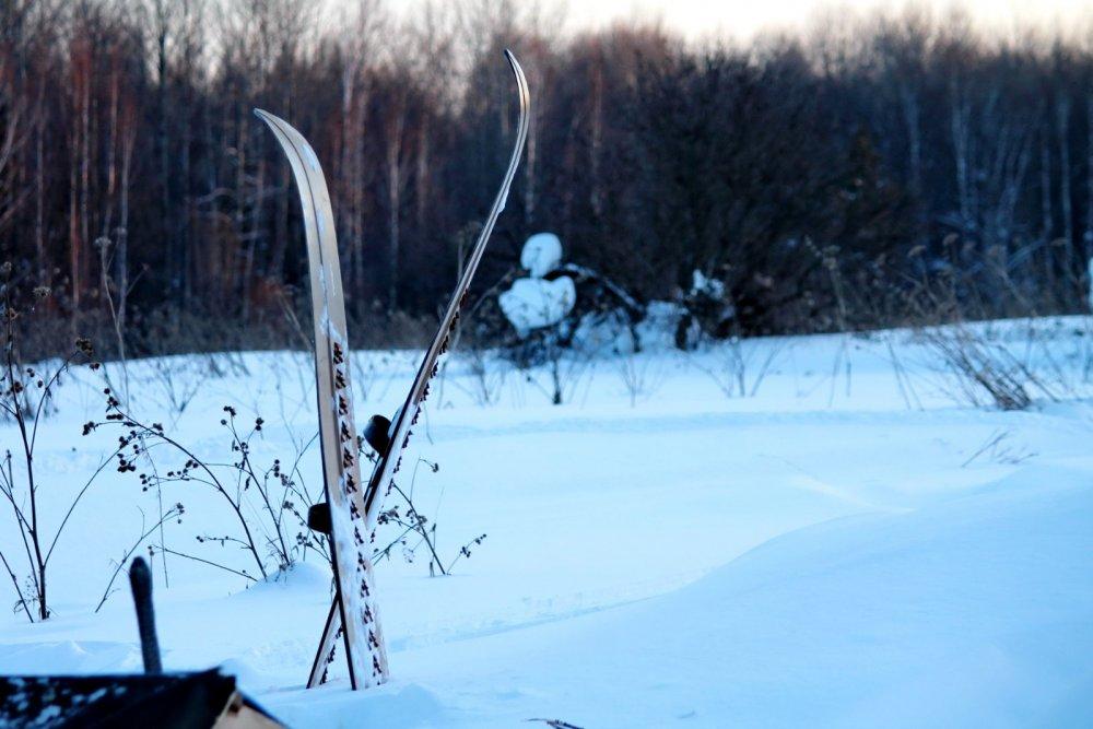 Теперь до следующей зимы....