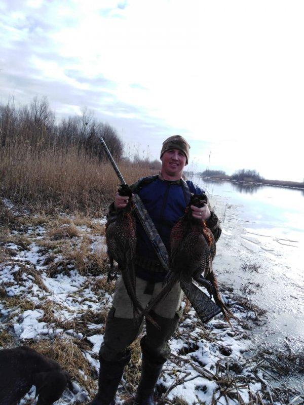 Охота на фазана!
