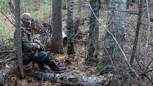 Снаряжение и экипировка для ходовой охоты