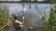 Летняя рыбалка на поплавочную удочку. Ловля линя.