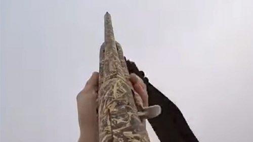 Открытие весенней охоты на гуся