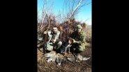 Открытие охоты на гуся 2019.Goose hunting 2019