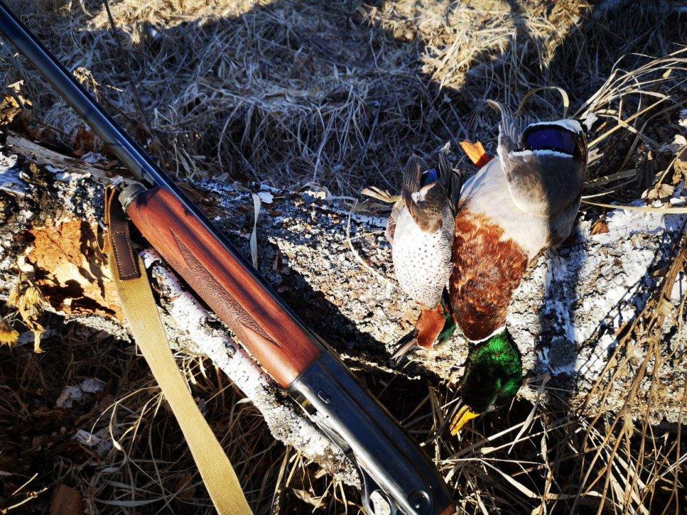 фото с охоты сайт сибирский охотник словно создано для