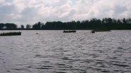 Лось плывет через реку.