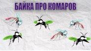 Байка про комаров.