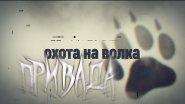 Охота на волка c ПУЛЬСАР ГУРУ, фильм первый.