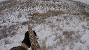 Лучшие моменты охоты на зайца. Выстрелы