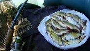 Ловля рыбы весной, секреты ловли.