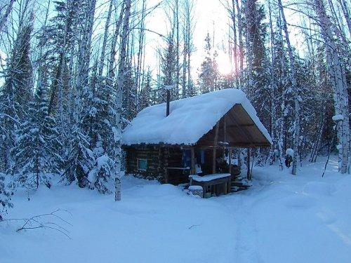 Новая зимуха