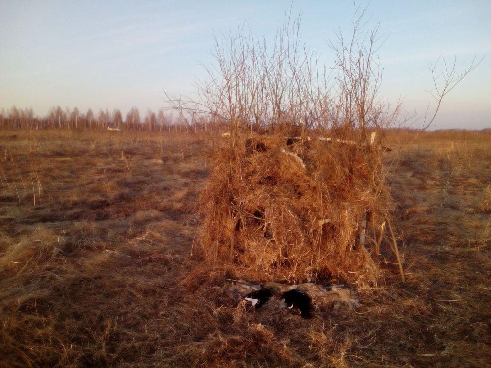 Первый день охоты