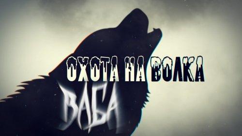 Охота на волка с Белорусским волчатником