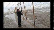 Ловля сёмги ставным неводом в Белом море